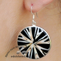 Spider-Shell Ear-Pendant with Silver 1