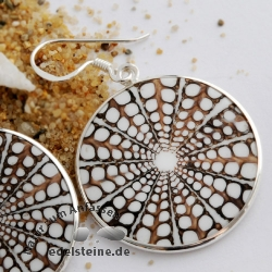 Spider-Shell Ear-Pendant with Silver 5