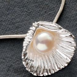 Silbermuschel mit Perle als Anhänger Weiss