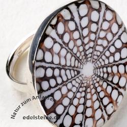 Spider Muschel Ring mit Silber BIG 11