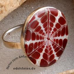 Spider Muschel Ring mit Silber 12