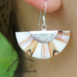 Natur Spider-Shell Ear-Pendant