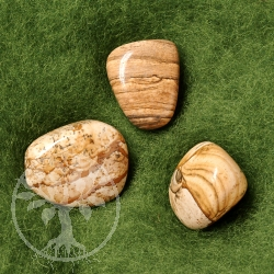 Picture Jasper Tumbled Stone 3 pieces