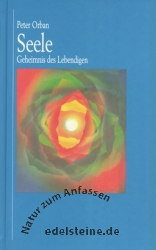 Book Seele - Geheimnis des Lebendigen