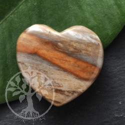 Petrified Wood Heart Pendant
