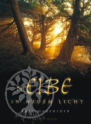 Buch Die Eibe in neuem Licht