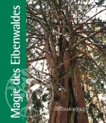 Buch Magie des Eibenwaldes