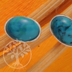 Chrysocolla Silver Earrings Oval