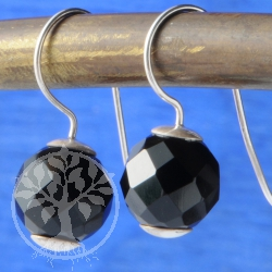 Black Onyx Faceted Earrings