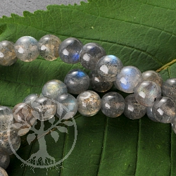 Labradorite Bracelet Round 6mm Beads