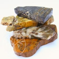 Petrified Wood Gemstone Slice