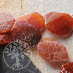 Fire Agate Solitary 30x22x6mm