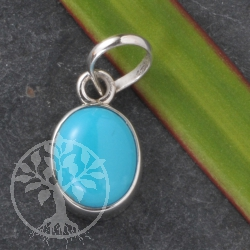 Turquoise Pendant oval