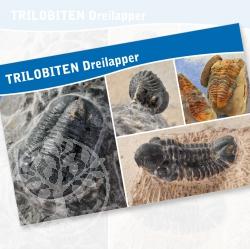 Trilobiten Fossilien Karte