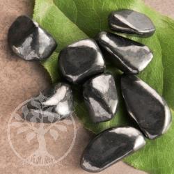 Schungit Wassersteine Trommelsteine M 50g