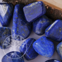 Lapislazuli Tumbled Stone 15-22mm