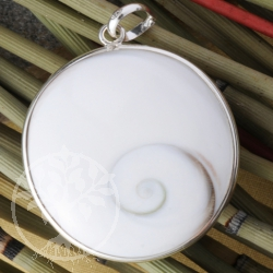 Shiva Shell Pendant  BIG