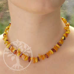 Amber Necklace Multicolor