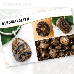 Stromatolithe Mineral Stone Description Cards