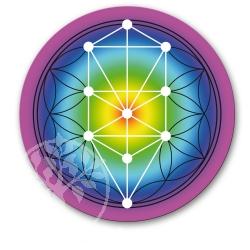 Tree of Life Sticker Rainbow