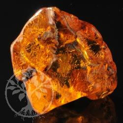 Amber Rough Stone