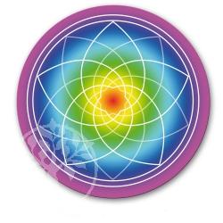 Venusflower Sticker Rainbow