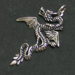 Silber Drachen 12