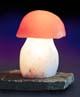 Salzkristall-Leuchte Steinpilz