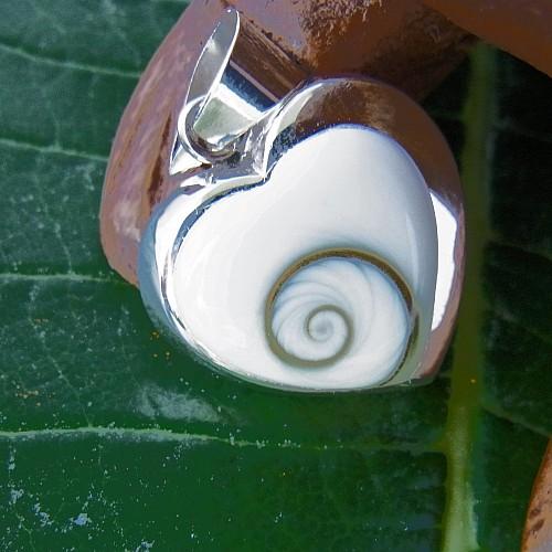Shivamuschel Anhänger Herz Silber 925 Fassung