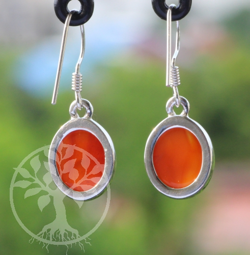 Karneol Ohrringe Orange Silber 925 10X27mm