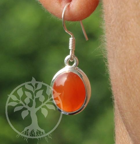 Karneol Ohrringe Orange Silber 925 10X27mm