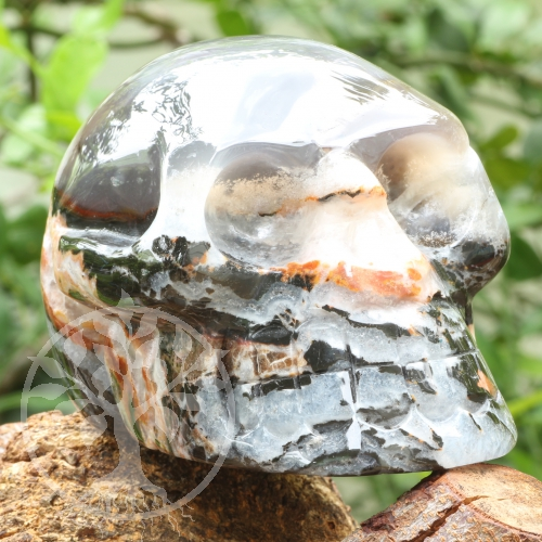 Sardonyx Print Stone Skull A 100/150mm