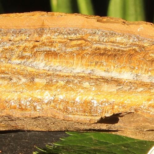 Tigereye Rough Semi-Precious Stone  12x10x4cm 890gramm