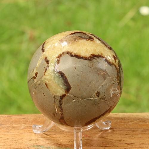Septaria sphere 68mm