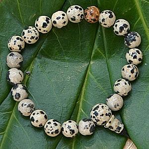 Dalmatiner Jaspis Armband