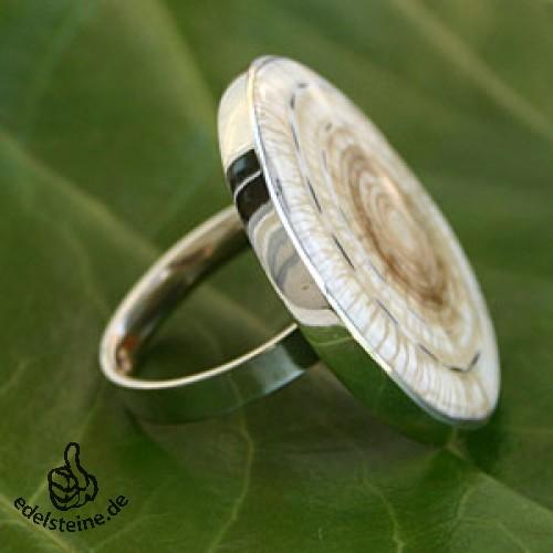 Muschel Ring 5