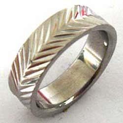 Edelstahl-Ring ER150 Feder