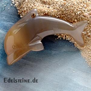 Carnelian Dolphin Big