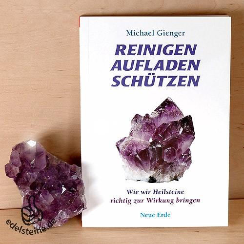 Book: Reinigen Aufladen Schützen von Michael Gienger