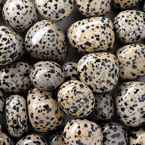 Dalmatiner-Jaspis Trommelsteine 3 Stück