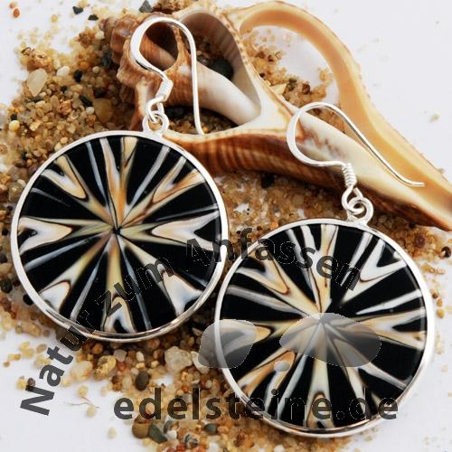 Spider-Muschel Ohrhänger mit Silber 1