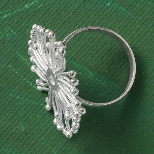 Silver Ring Sea Anemone