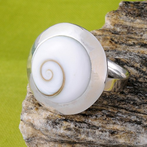 Flat Shiva Shell Ring with silver 13 mm