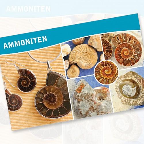 Ammoniten Fossilien Karte