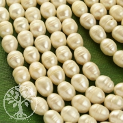 Natural pearls form oval