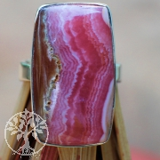 Rhodochrosite Ring AA in Sterling Silver Size 62 Rectangle