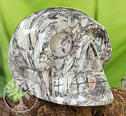 Picasso-Jasper Skull 100/150mm