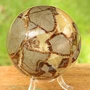 Septarien Stein Kugel ca. 60mm Kontinente