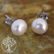 Pearl Earstuds white 6mm