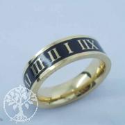 Edelstahl-Ring ER540